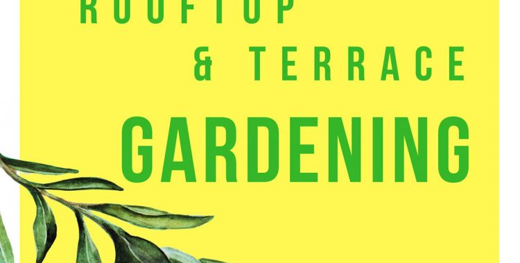 Rooftop-terrace-gardeing-landscape-lawn-ideas-pictures-design-roof-home-kitchen-lahore-pakistan