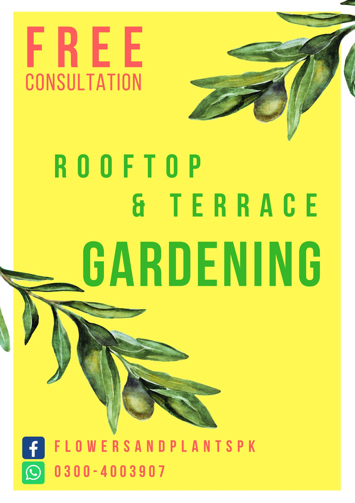 Free Consultation For Rooftop Amp Terrace Gardening